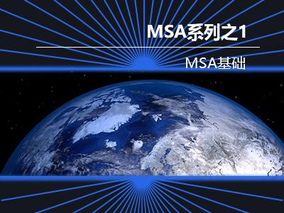 MSA系列课程之一:MSA基础